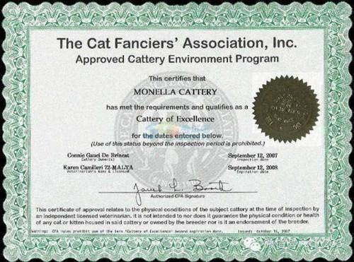 特许金融分析师证书