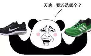 u=1172283814,3932130869&fm=173&s=2FC67A23D0F3D3A11069B9D2010030B1&w=300&h=172&img - 運動鞋Nike還是Adidas選哪個?
