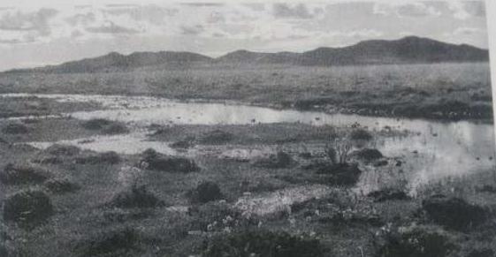 红军走过的水草地