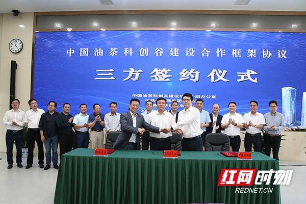 中國油茶科創谷建設合作框架協議在長沙簽約