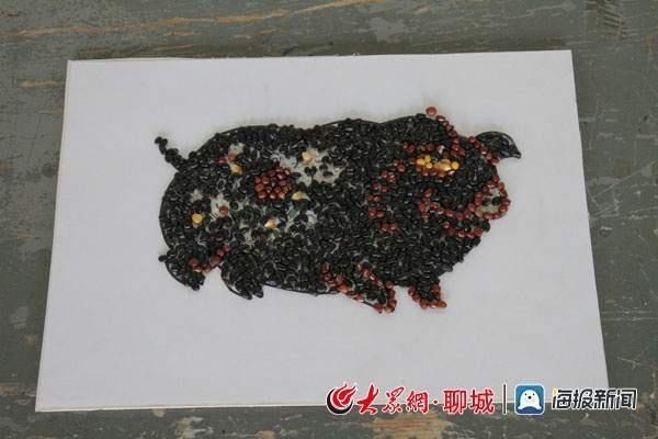 """聊城大学生五谷作画 创意""""萌猪""""喜迎新春"""