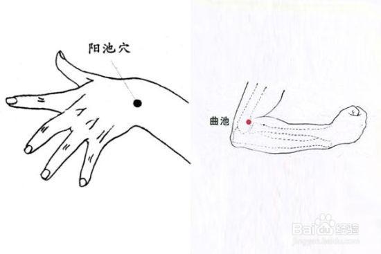 困倦易疲劳时按摩哪些穴位? -  中国书画 - 中国书画