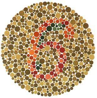 学车体检色盲测试图(图4)