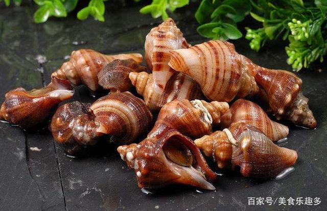海螺的美味吃法你知道是什么嗎?我就只有吃過一次(圖5)