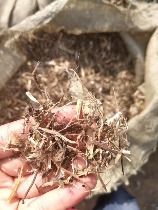除土去膜粉碎切段揉丝机优缺点
