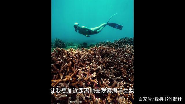 极致中国,今年最喜欢的纪录片,极力推荐!