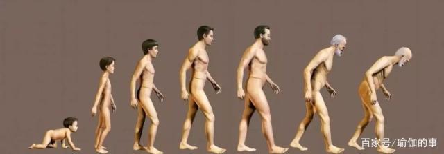 一套流动的瑜伽序列,灵活脊柱,越活越年轻!