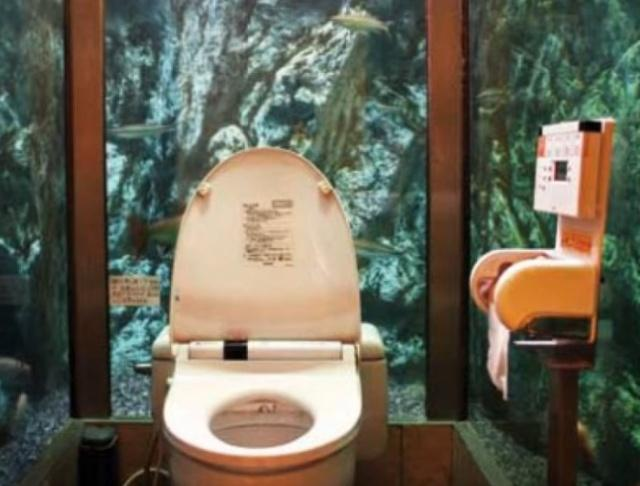 世界上最奇葩的十个厕所,墙高50厘米,还只挡三面(www.souid.com)