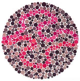 学车体检色盲测试图(图1)