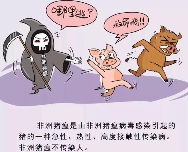 山东人注意!三全水饺被检出猪瘟病毒!还有这些品牌…最新回应来了!