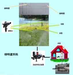 微喷灌系统解决方案