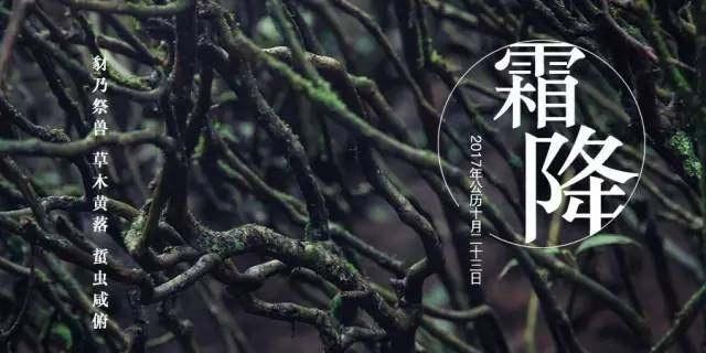 新兴县满氏家庭农场山庄,一个适合亲子休闲旅游的好地方