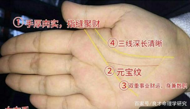手相命运图解:你的手肉多且厚,是福气吗?-轻博客