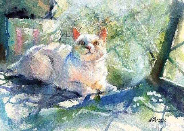 猫生足矣!一只水彩猫慵懒惬意的幸福生活