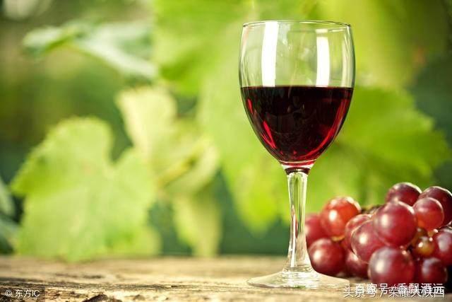为什么说女性和葡萄酒能美容