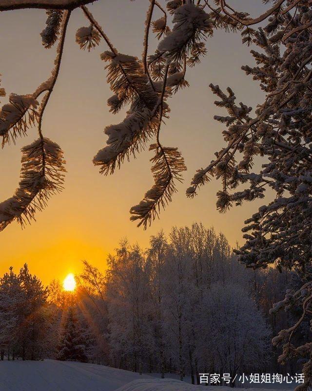 关于早安励志的句子,句句阳光正能量,送给努力