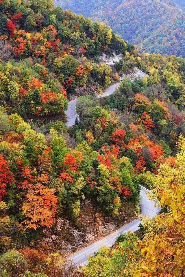 西安向南1小时,这条秦岭老国道有撩人的秋色!人少路好走