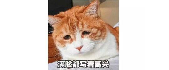 文章縮略圖