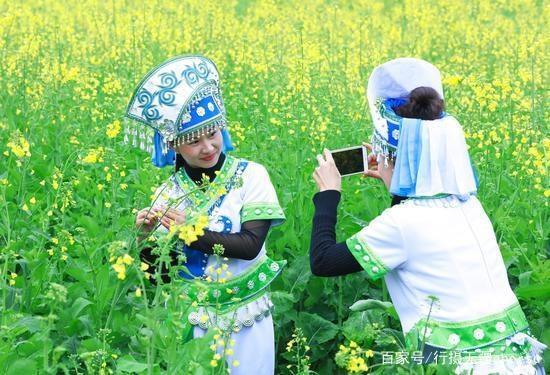 这个春节假期,迷失在罗平的油菜花海里,难以自拔,不想回去上班